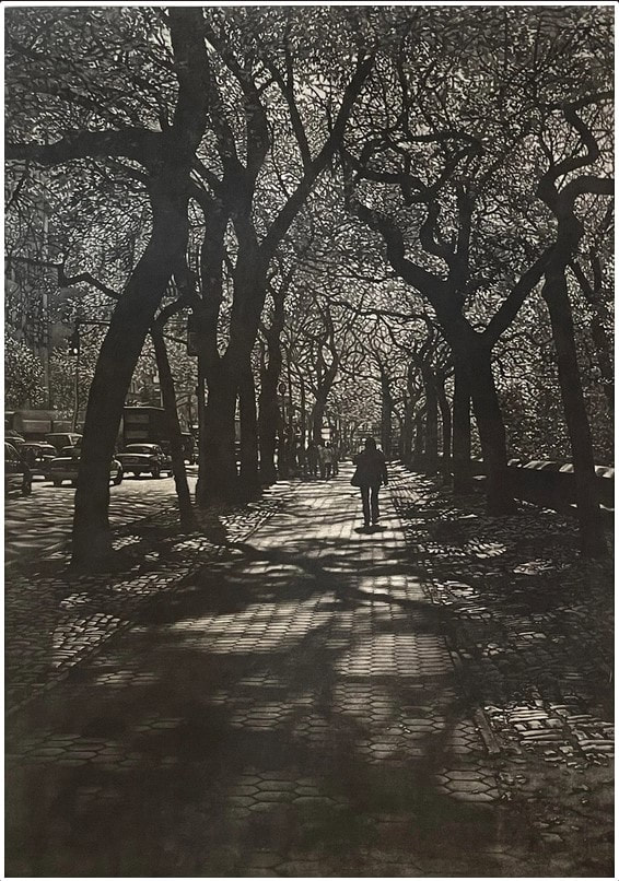 picture of person walking in Central Park