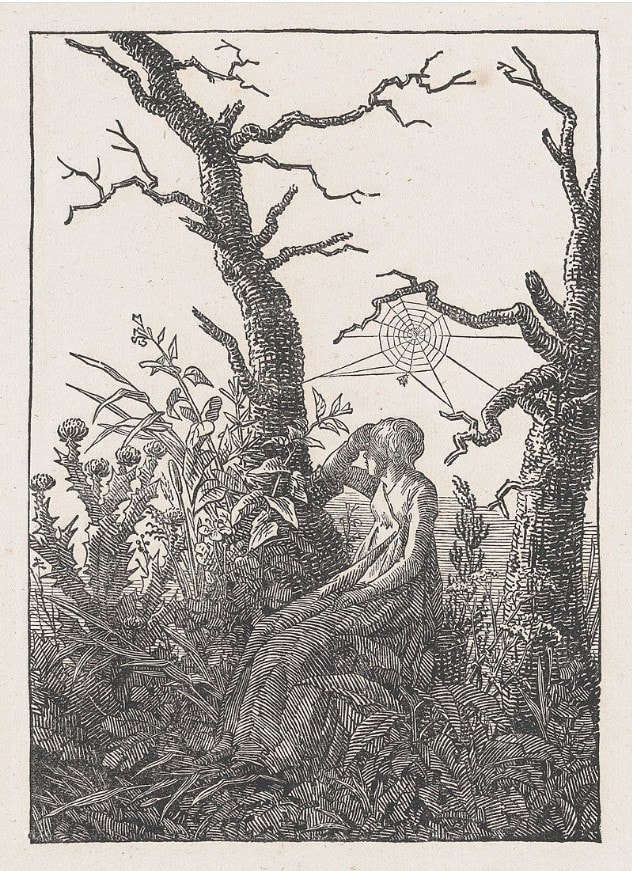 Picture of Caspar David Friedrich's drawing Woman